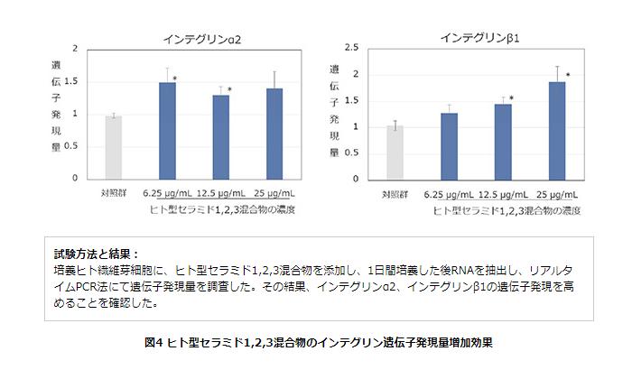 ヒト型セラミド1,2,3混合物のインテグリン遺伝子発現量増加効果