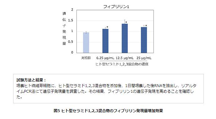 ヒト型セラミド1,2,3混合物のフィブリリン発現量増加効果