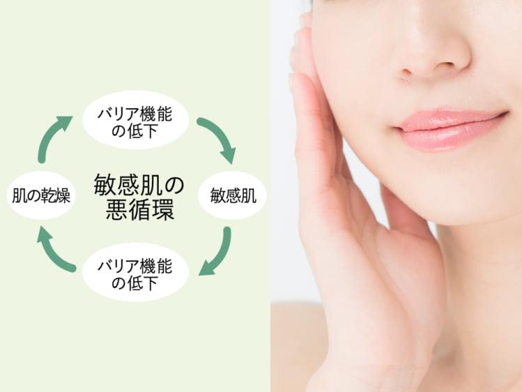 敏感肌の悪循環