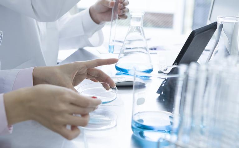 セラミドの実験結果から検証するセラミドの効果
