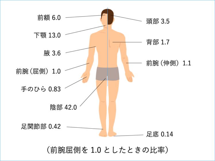 人にヒドロコルチゾン(基剤.ワセリン)を適用した後の尿中排泄量を検討した試験結果
