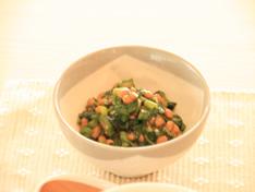 本日の献立 レシピ2PHOTO
