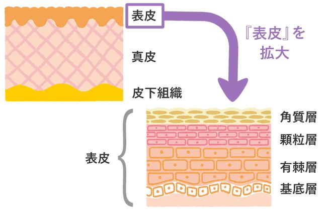 今日から始めよう!花粉から肌を守るためのスキンケア